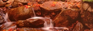 Panoramic photo of a stream in autumn in Fundy Nagtional Park in New Brunswick, Canada