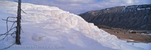 Panoramic photo of the white Minerva Terrace in Yellowstone National Park.